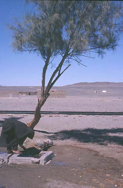 Iran 1969 - Point d eau dans le jardin ...
